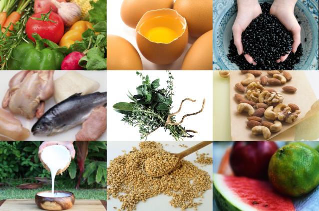 1a a varietarian diet collage
